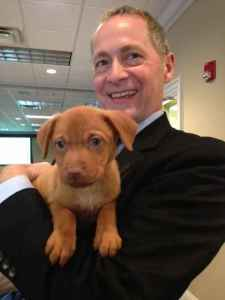 David Biemesderfer, President & CEO of the Florida Philanthropic Network, give some extra love to a rescued puppy from Honor Animal Rescue while visiting during the 36-Hour Giving Challenge